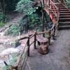 湖北襄阳五道峡景区仿木景观